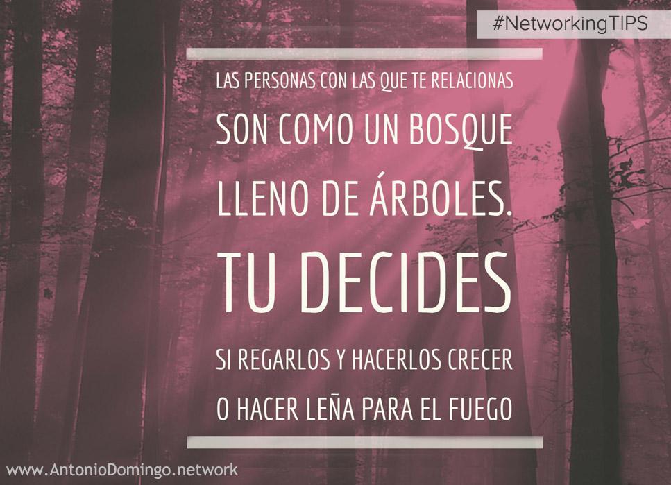 Interactuar es talar o regar #NetworkingTips - Antonio Domingo