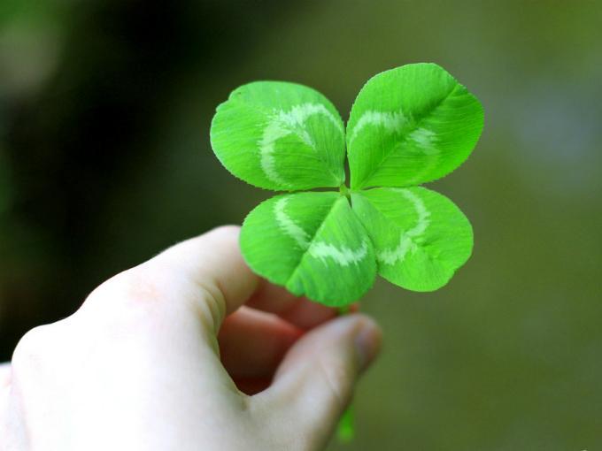 Quiero tener suerte